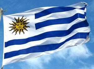 ¿Cuáles son las bandas de red de uruguay?